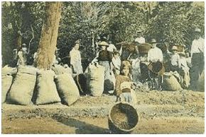 Costa-Rica-History-1