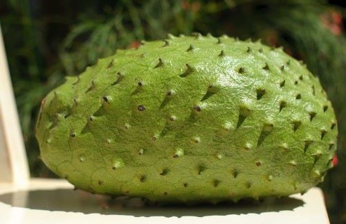 Guanaba-WHAT? The history and health benefits of the soursop fruit