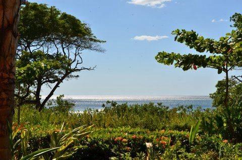 Costa-Rica-2012-331
