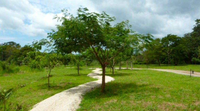 Walking-trail-2