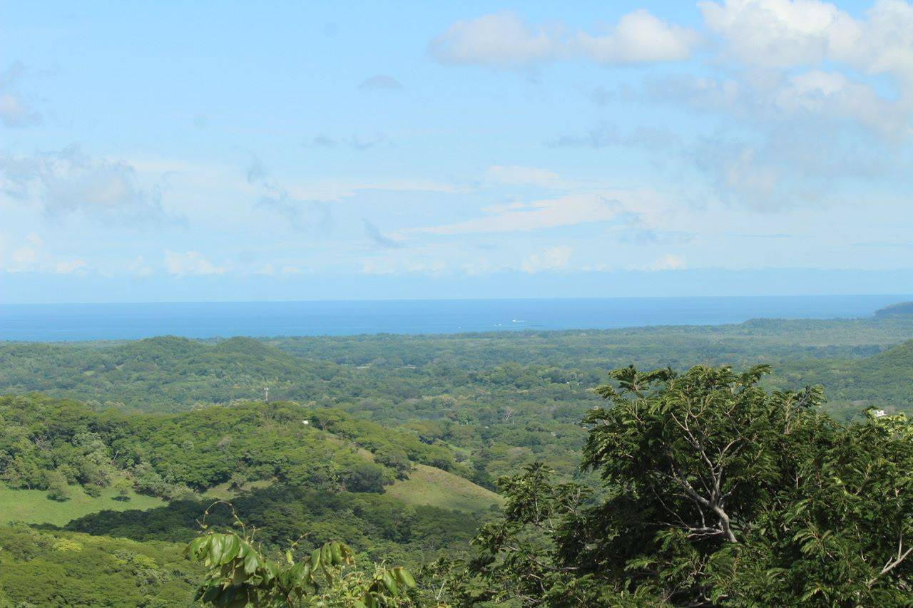 32 Hectar Ocean View Development Property and Teak Farm in the Hills Overlooking Tamarindo and Playa Grande!