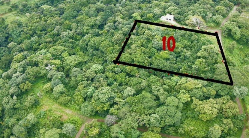 Lot 10 aerial view