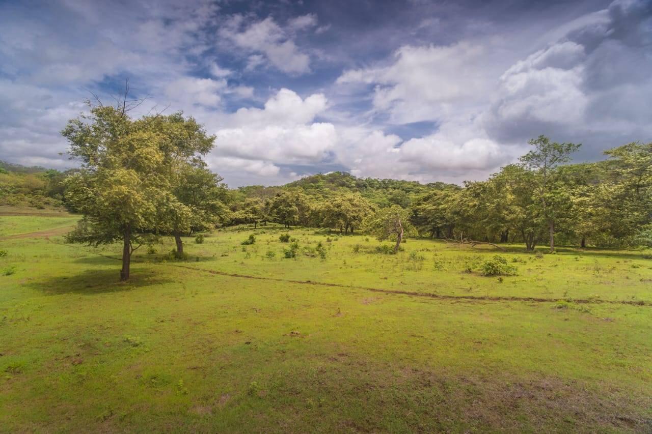 FINCA LOS TRES LECHES- 32 HECTARES LAND CLOSE TO TAMARINDO AND PLAYA GRANDE