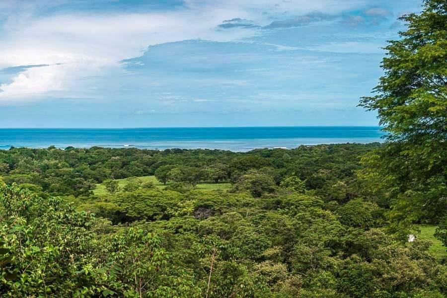 Costa Rica Playa Negra real estate