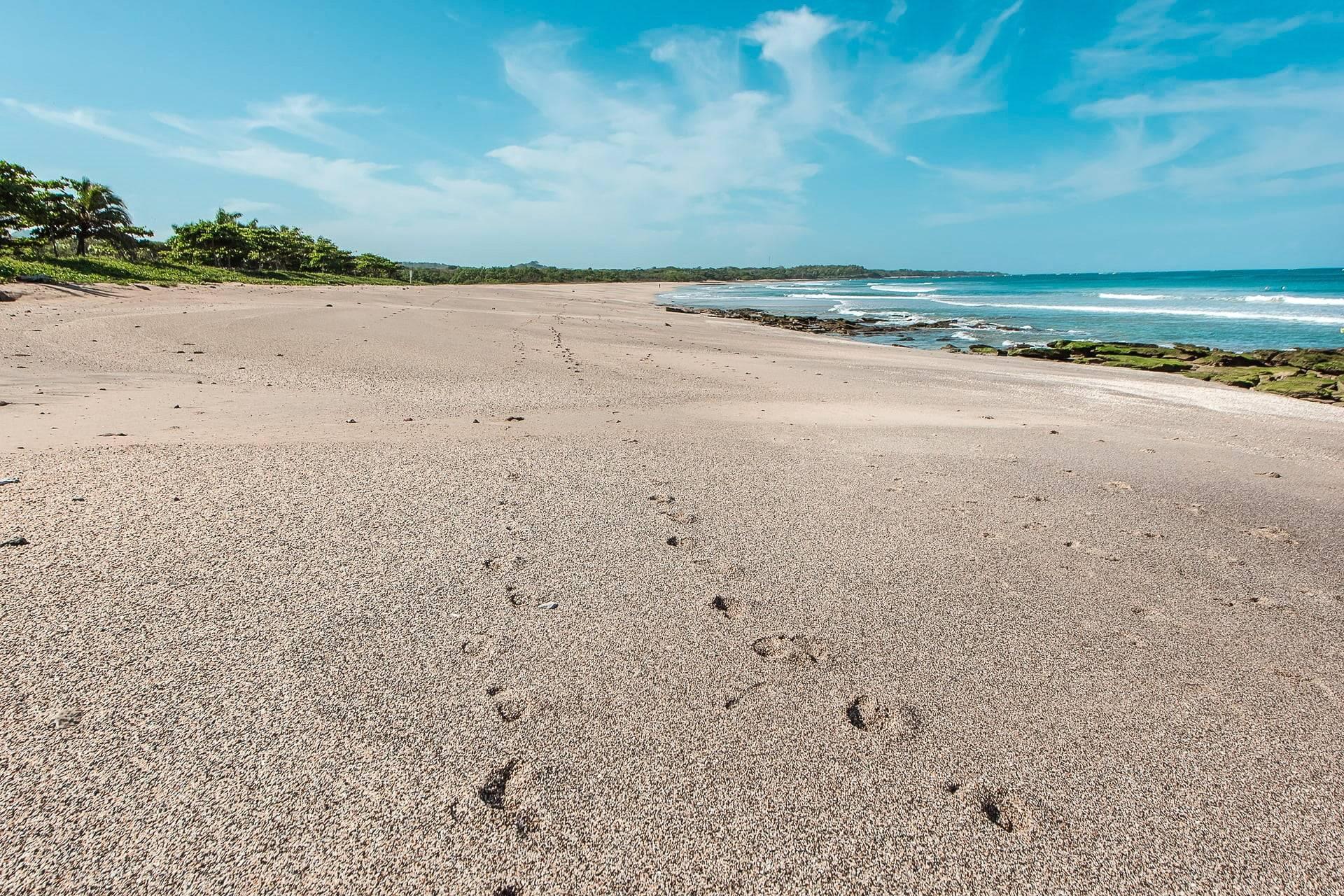 Playa Avellanas Costa Rica real estate