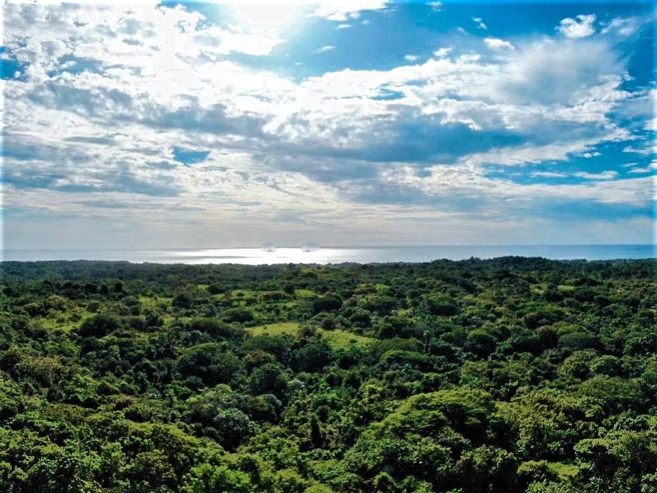 Playa Lagarto real estate Costa Rica