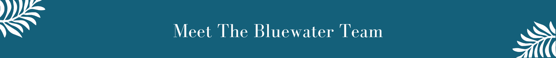 Meet The Bluewater Team